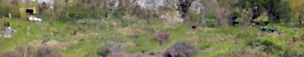 FinchesjarRietz